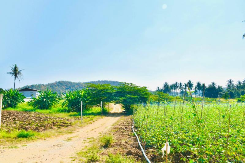 Land plot for sale in Pranburi with mountain view