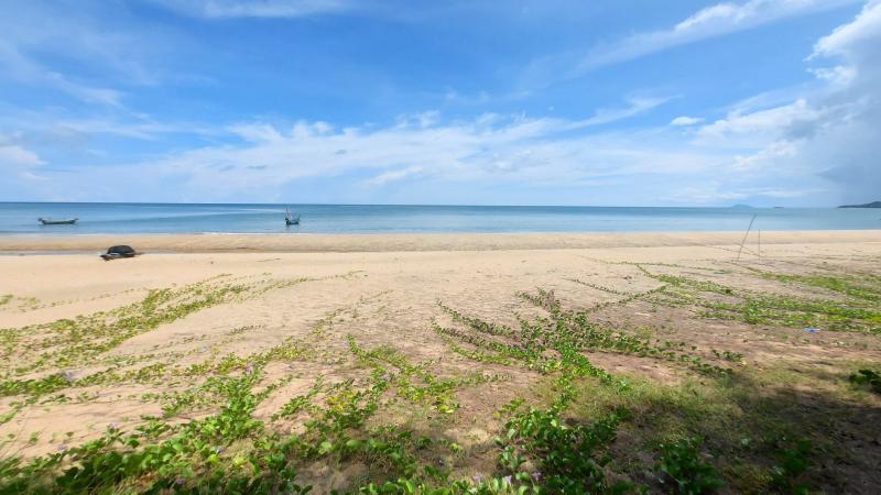 24 Rai Beach land for sale in Thap Sakae, Prachuap Khiri Khan – 125 m of Beachfront access!